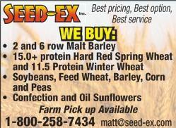 Image for Two row malt barley varieties:…
